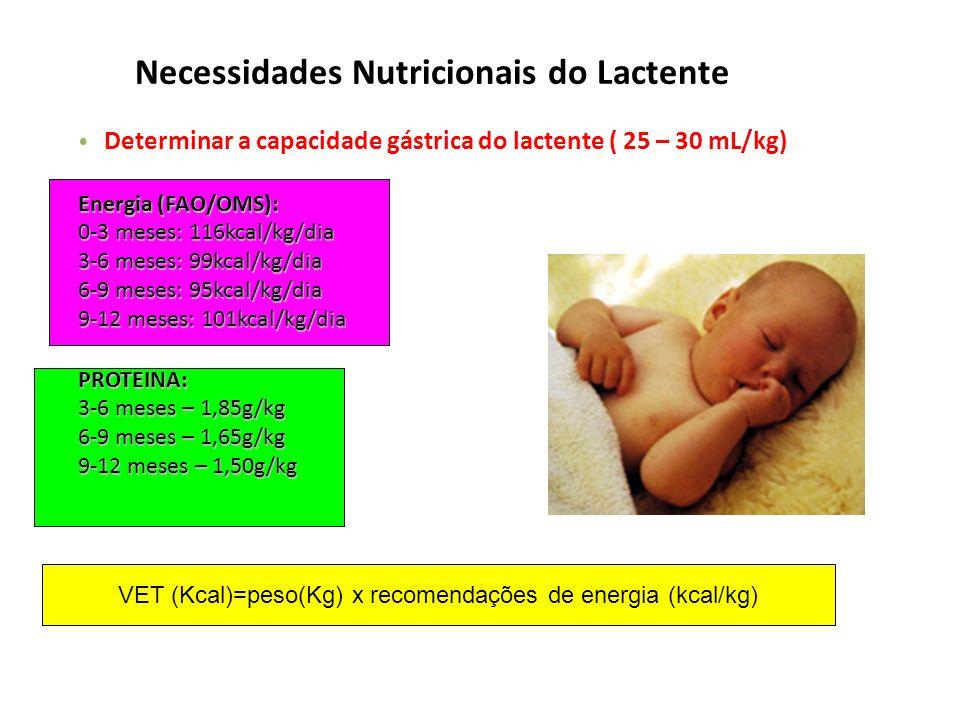 Necessidades Nutricionais do Lactente