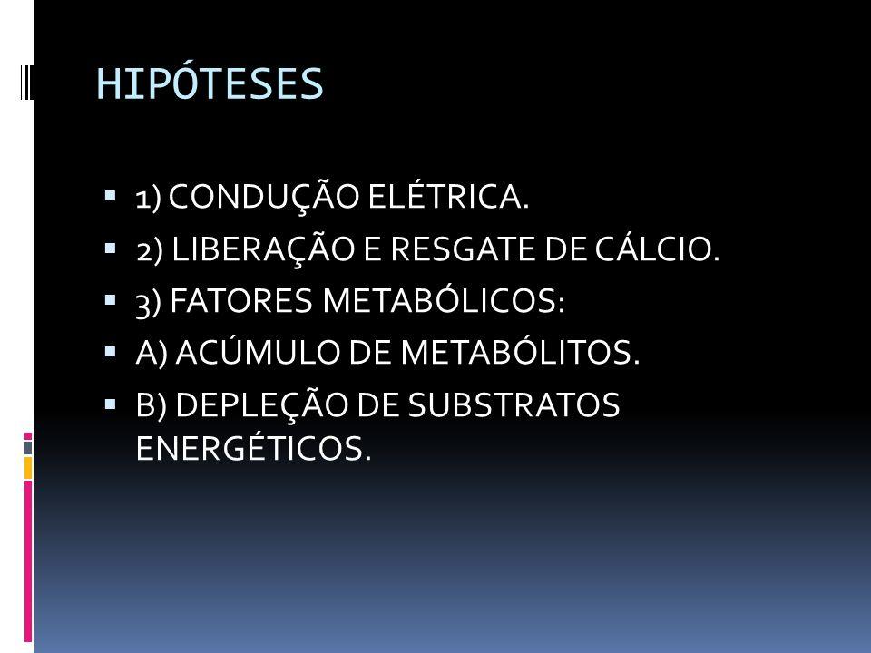HIPÓTESES 1) CONDUÇÃO ELÉTRICA. 2) LIBERAÇÃO E RESGATE DE CÁLCIO.