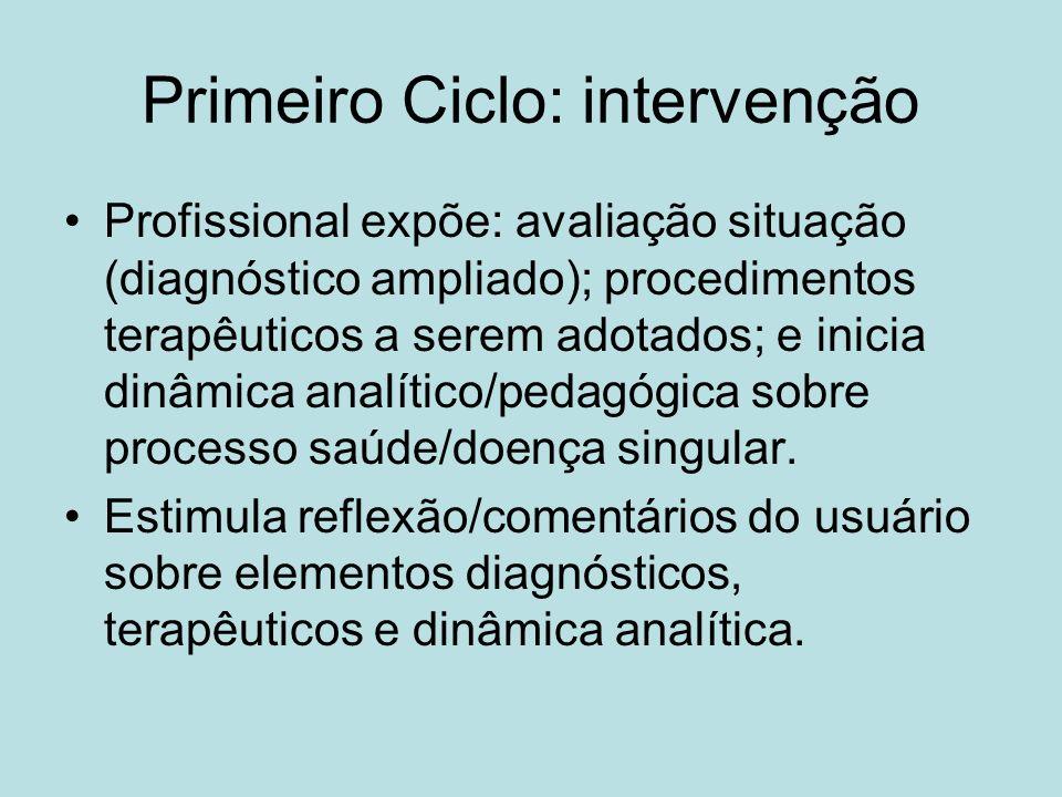 Primeiro Ciclo: intervenção