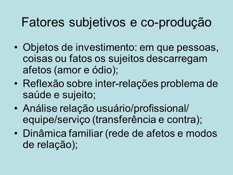 Fatores subjetivos e co-produção
