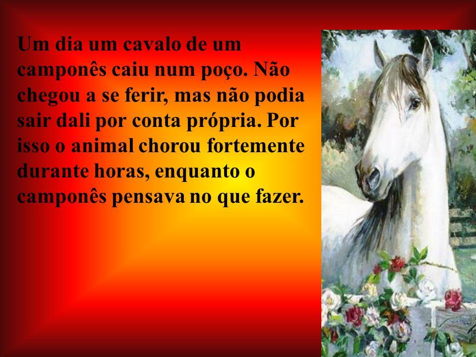 Um dia um cavalo de um camponês caiu num poço