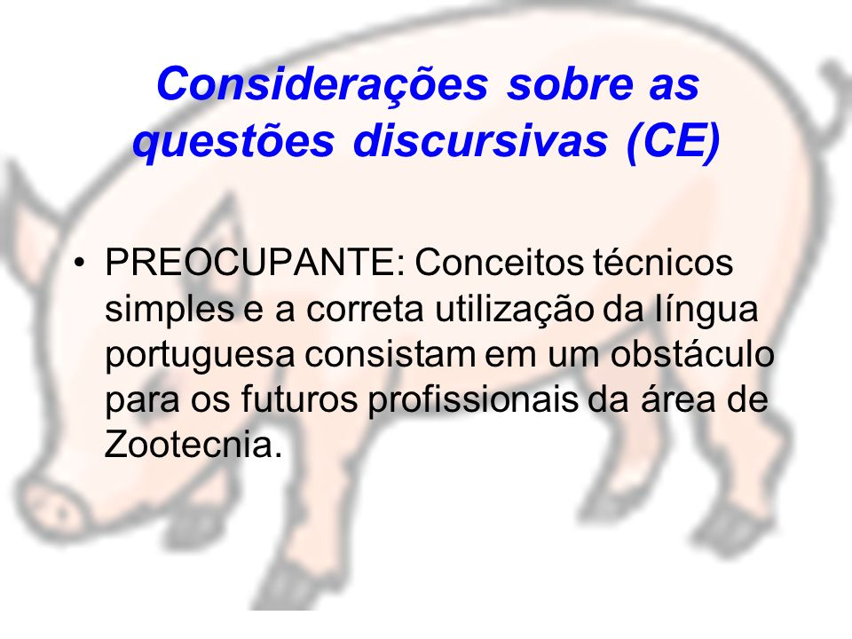 Considerações sobre as questões discursivas (CE)