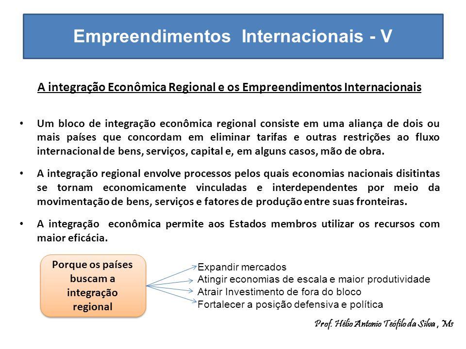 Empreendimentos Internacionais - V