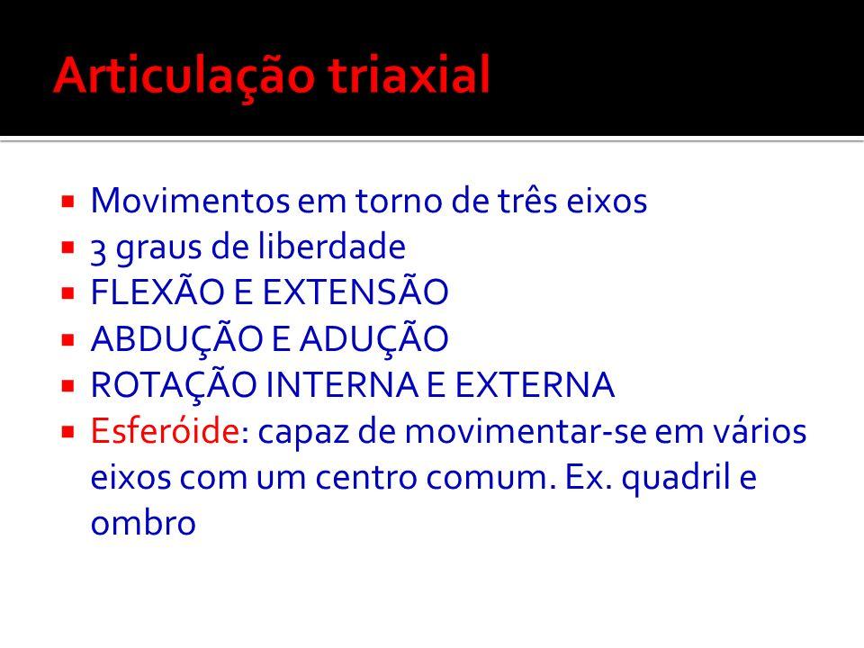 Articulação triaxial Movimentos em torno de três eixos