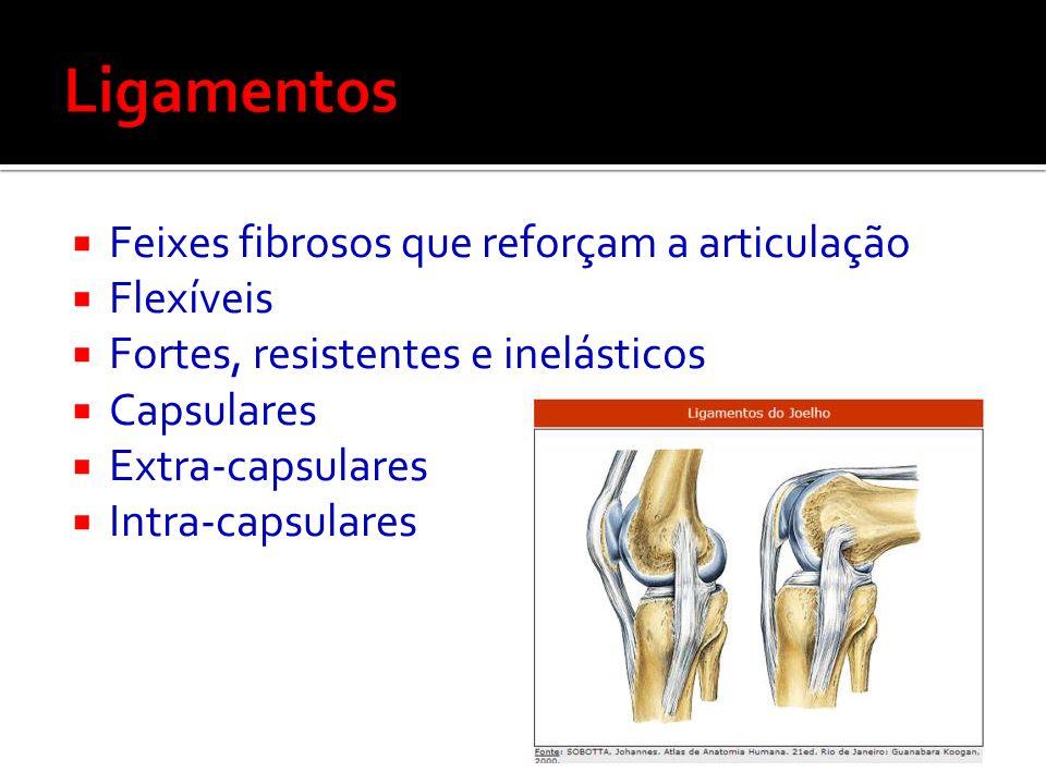 Ligamentos Feixes fibrosos que reforçam a articulação Flexíveis