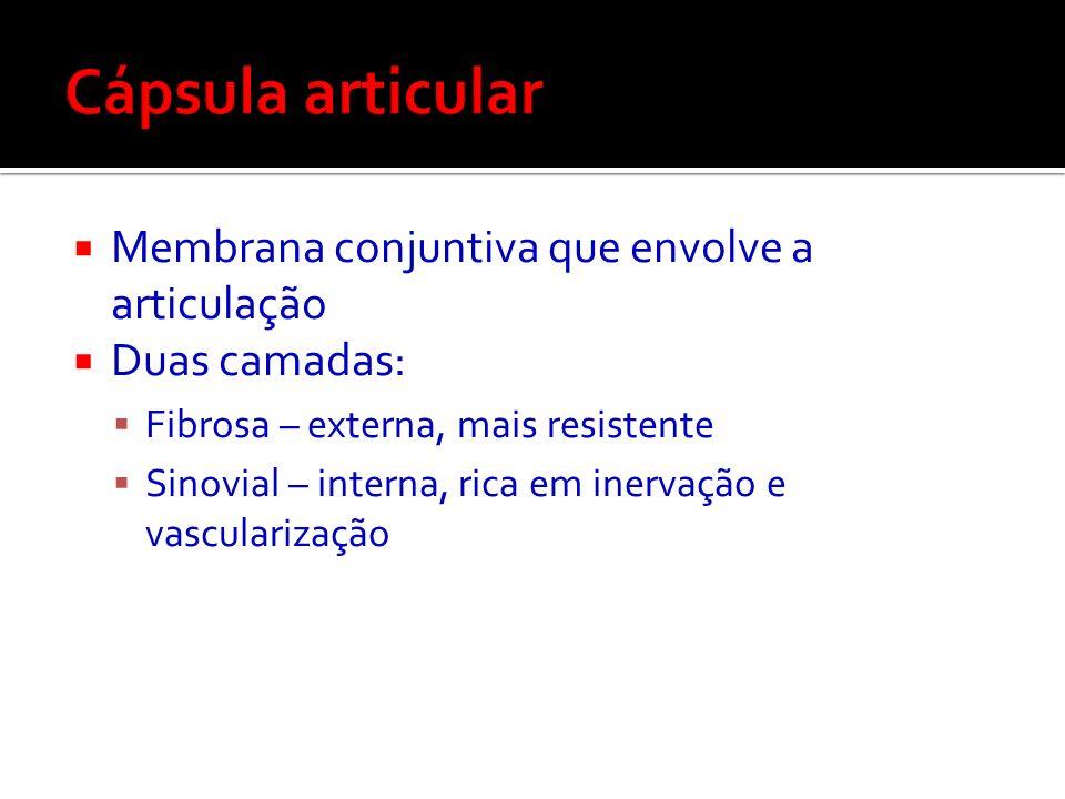 Cápsula articular Membrana conjuntiva que envolve a articulação