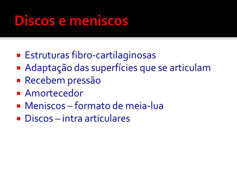 Discos e meniscos Estruturas fibro-cartilaginosas