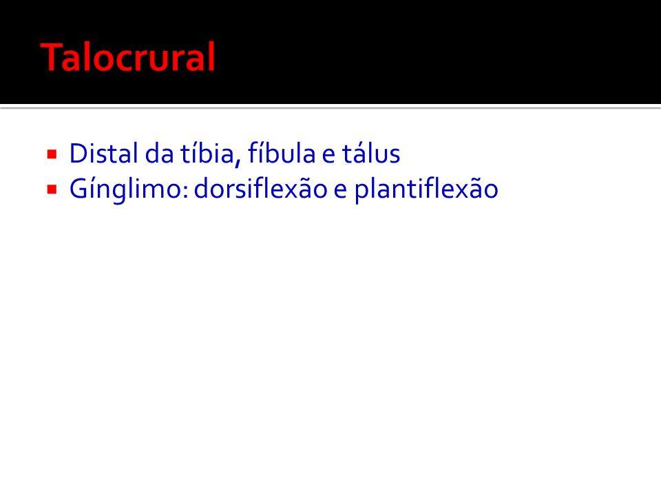 Talocrural Distal da tíbia, fíbula e tálus