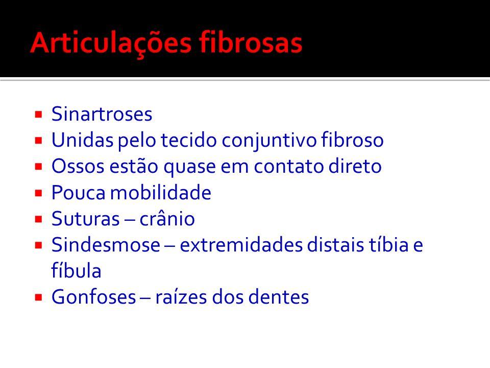 Articulações fibrosas