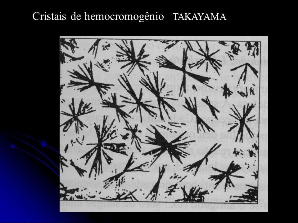 Cristais de hemocromogênio TAKAYAMA