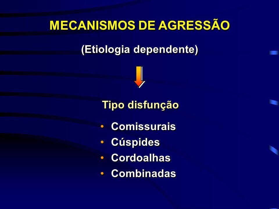 MECANISMOS DE AGRESSÃO (Etiologia dependente)