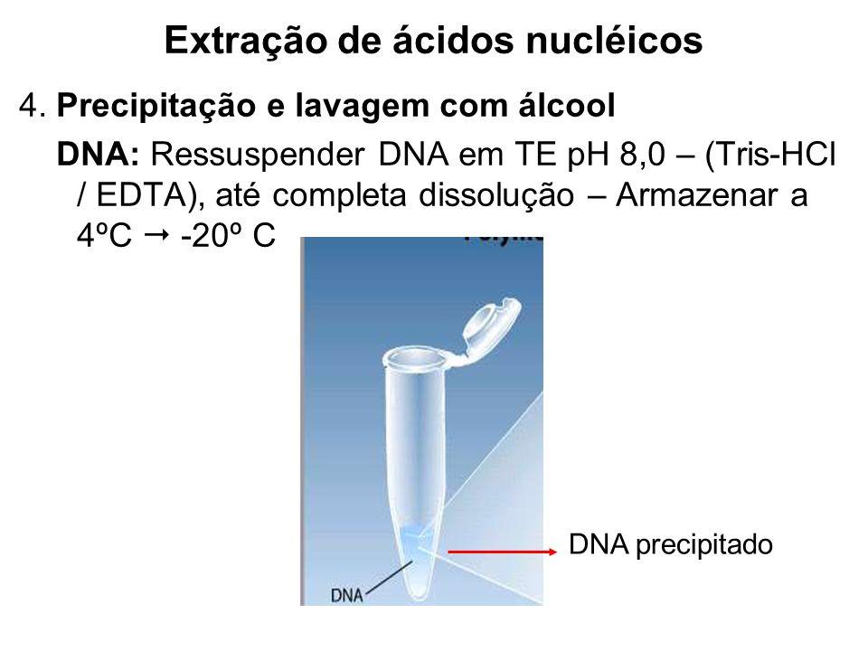 Extração de ácidos nucléicos