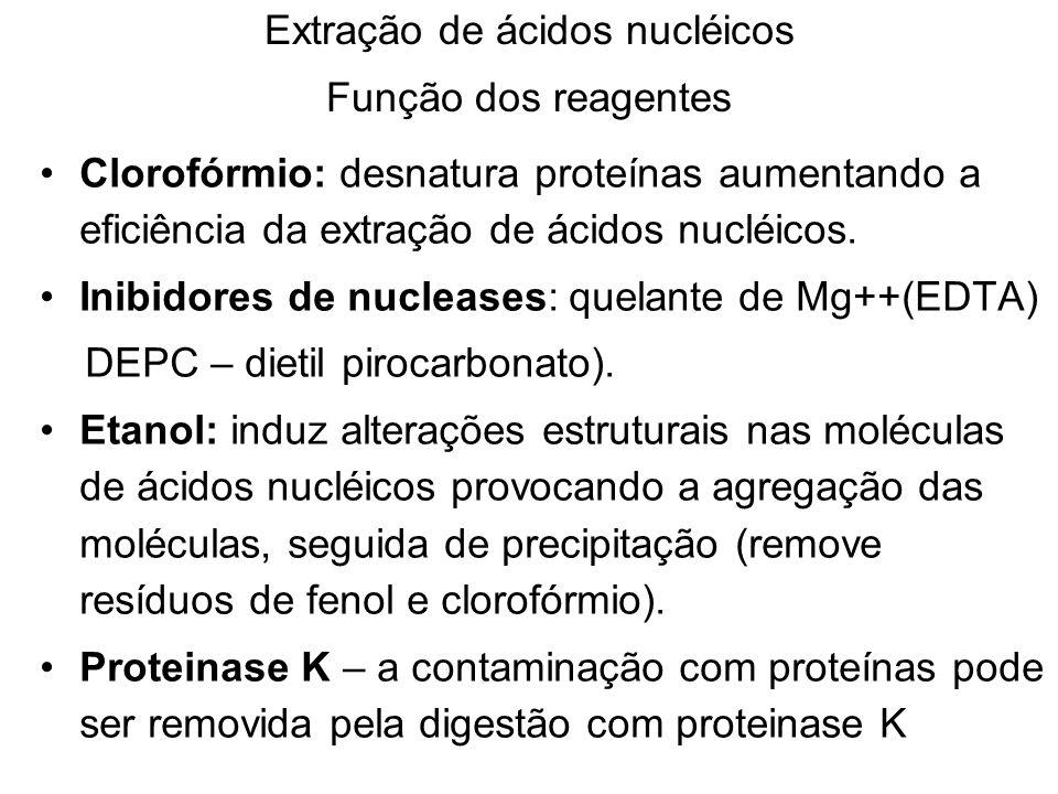 Extração de ácidos nucléicos Função dos reagentes