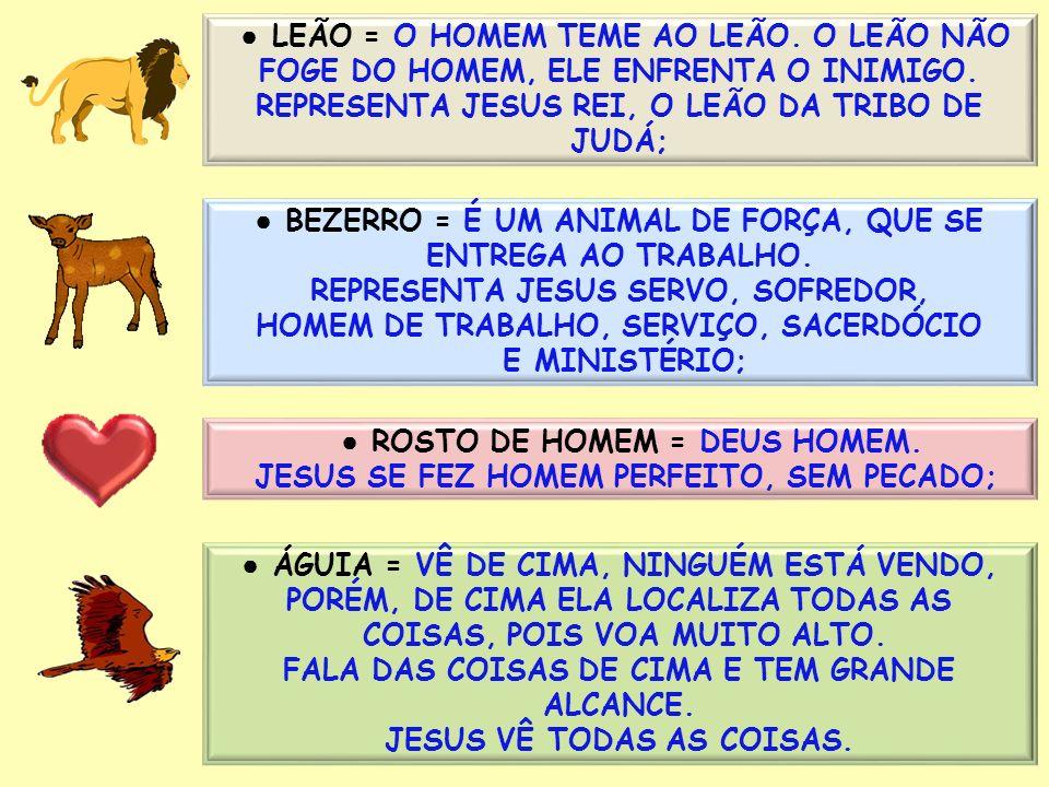 REPRESENTA JESUS REI, O LEÃO DA TRIBO DE JUDÁ;