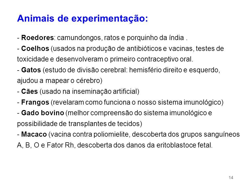 Animais de experimentação: