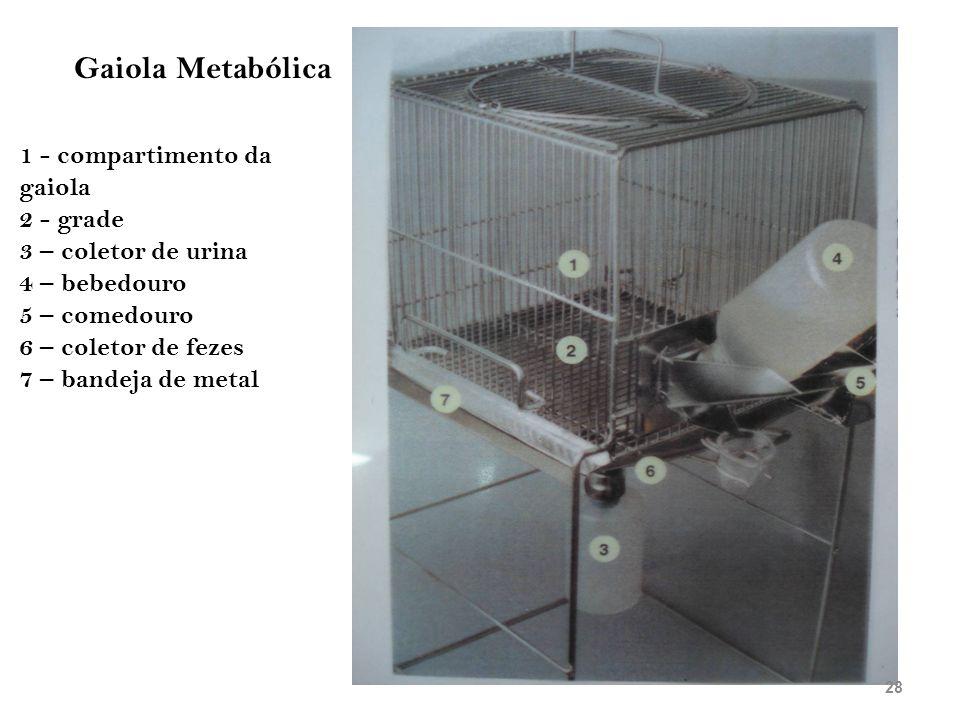Gaiola Metabólica 1 - compartimento da gaiola 2 - grade