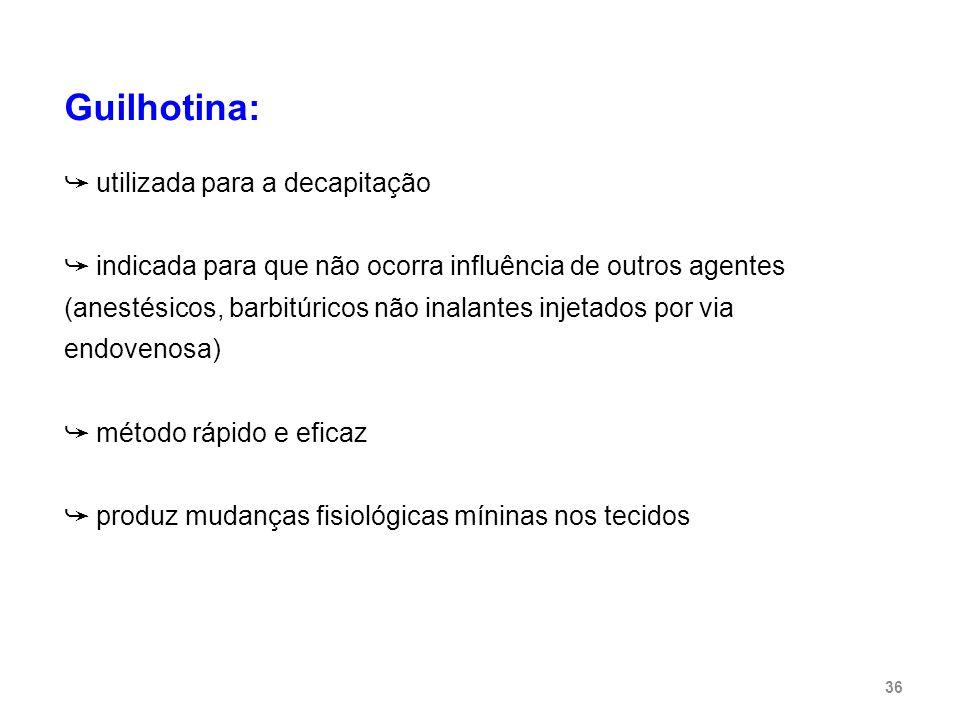Guilhotina: ➥ utilizada para a decapitação