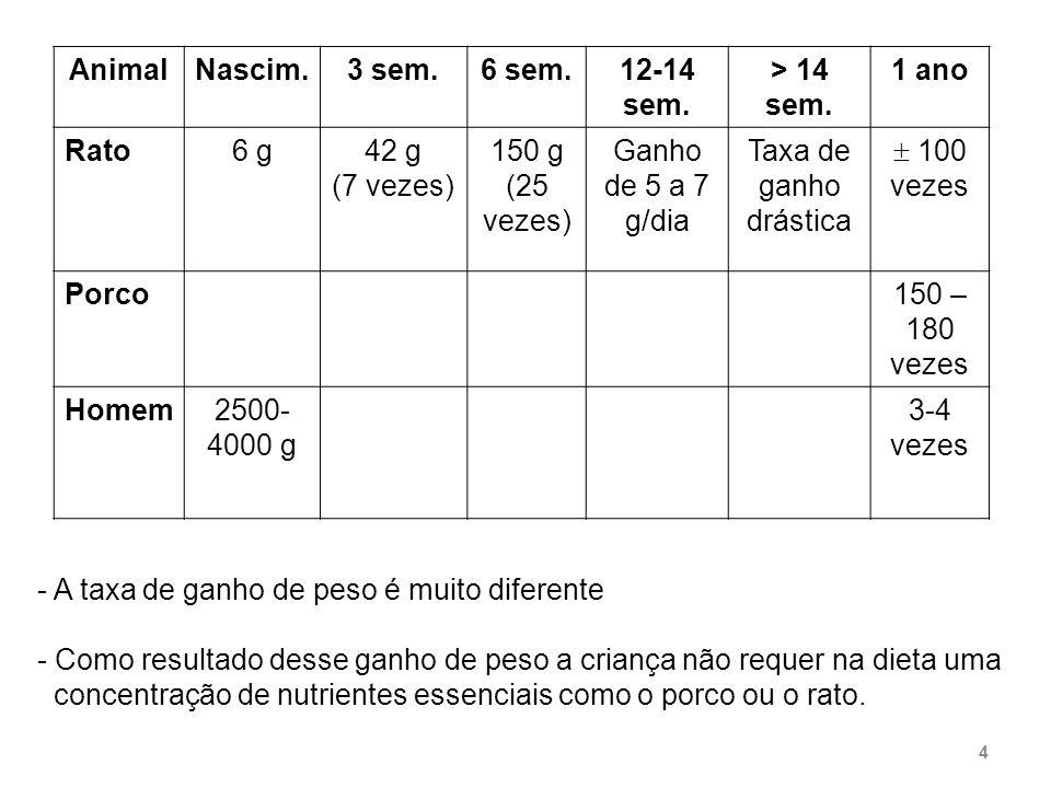 Animal Nascim. 3 sem. 6 sem. 12-14 sem. > 14 sem. 1 ano. Rato. 6 g. 42 g. (7 vezes) 150 g.