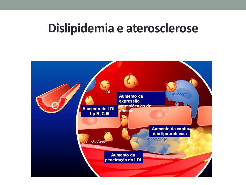 Dislipidemia e aterosclerose
