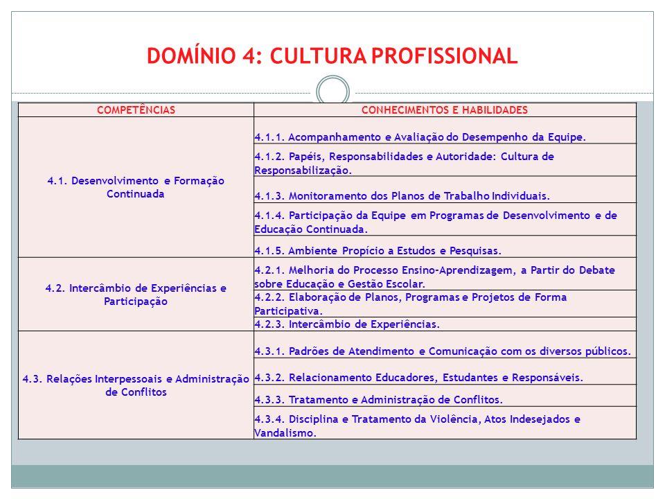 DOMÍNIO 4: CULTURA PROFISSIONAL