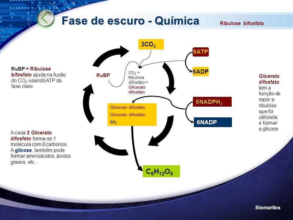 Fase de escuro - Química