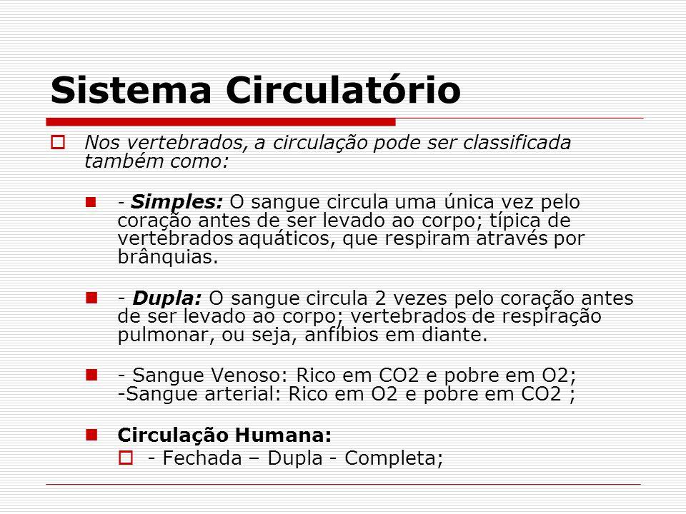 Sistema Circulatório Nos vertebrados, a circulação pode ser classificada também como: