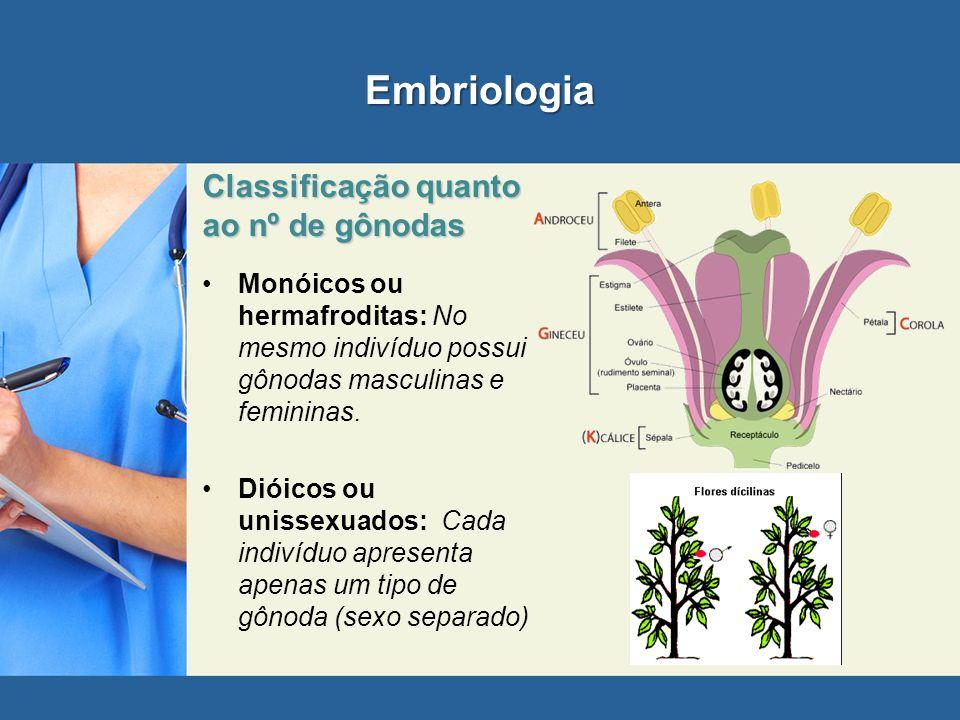 Embriologia Classificação quanto ao nº de gônodas