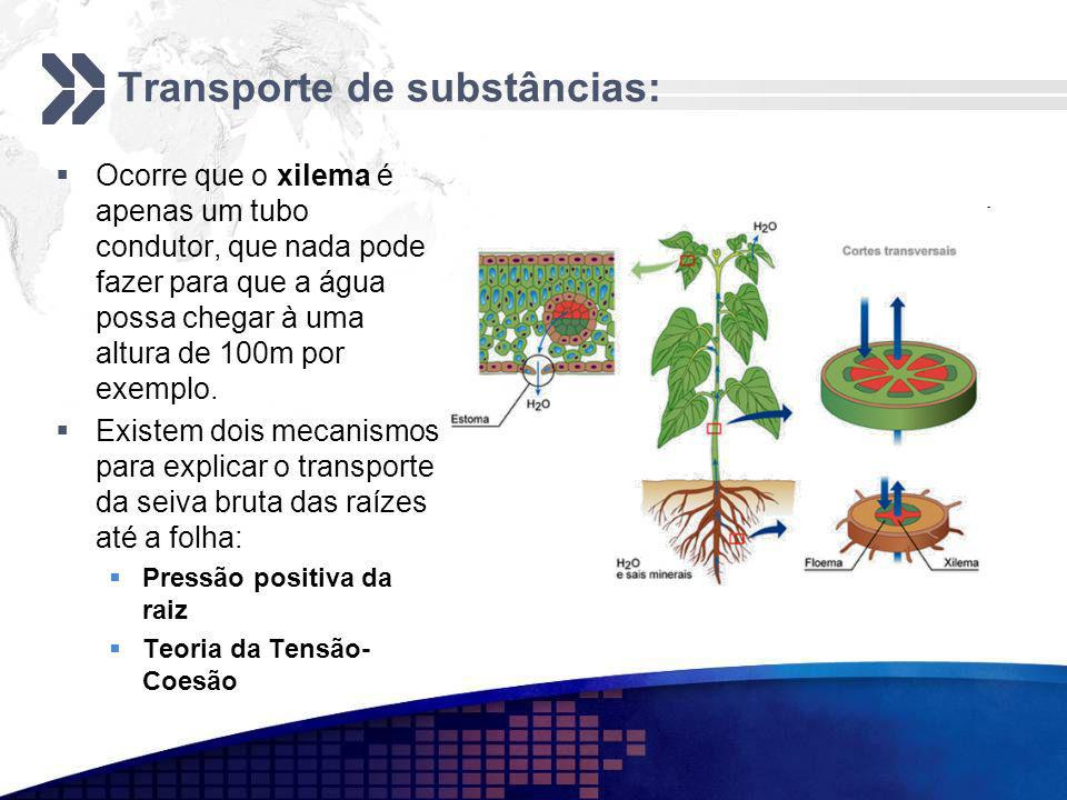 Transporte de substâncias: