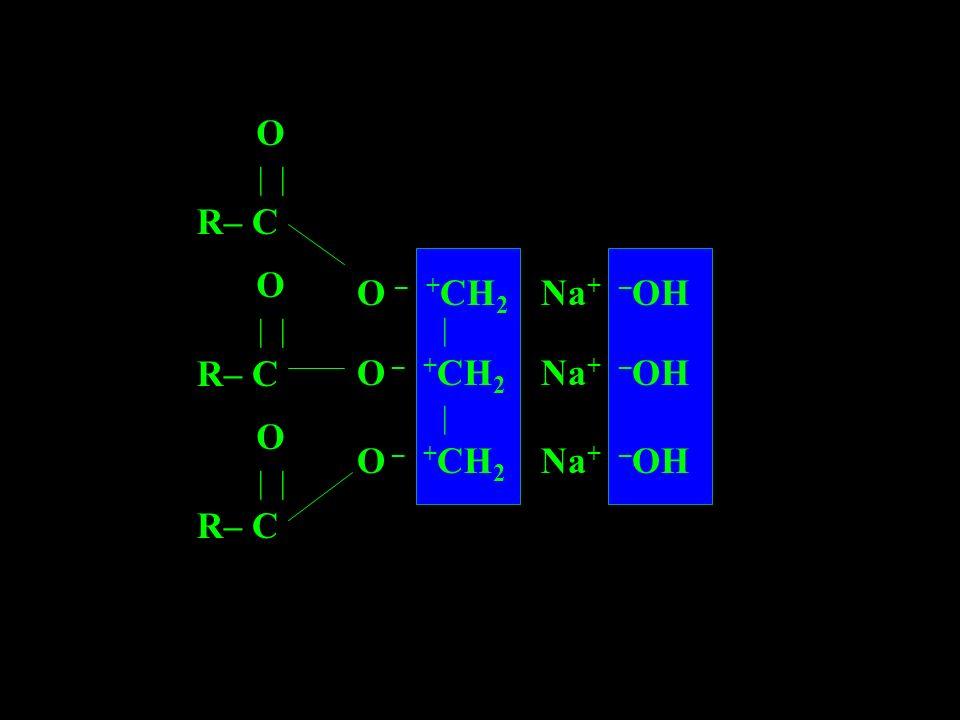 R– C | | O O – +CH2 Na+ –OH | O – +CH2 Na+ –OH | O – +CH2 Na+ –OH