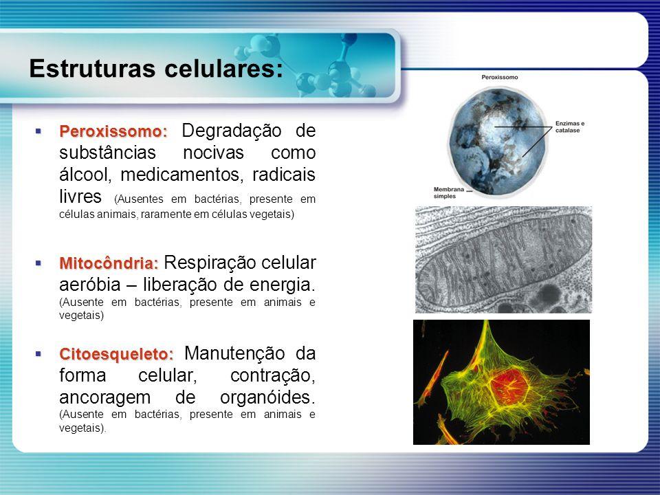 Estruturas celulares: