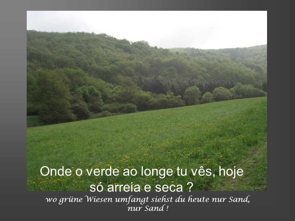 Onde o verde ao longe tu vês, hoje só arreia e seca