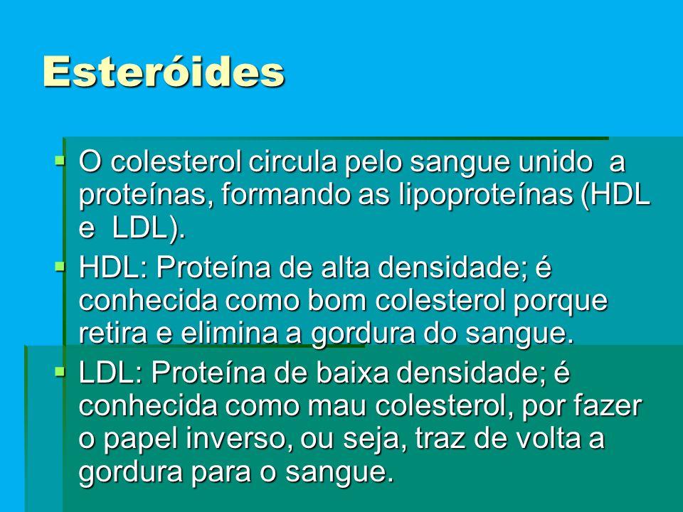Esteróides O colesterol circula pelo sangue unido a proteínas, formando as lipoproteínas (HDL e LDL).