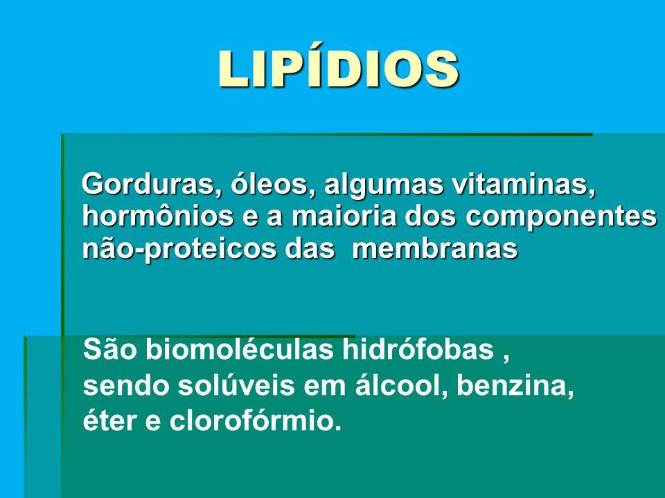 LIPÍDIOS Gorduras, óleos, algumas vitaminas, hormônios e a maioria dos componentes não-proteicos das membranas.