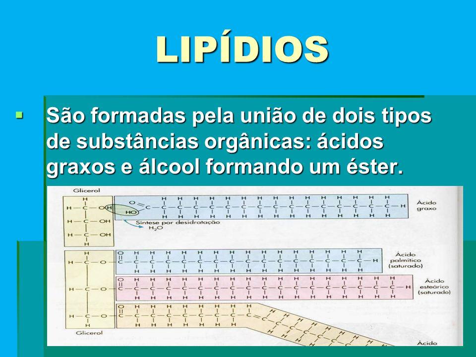 LIPÍDIOS São formadas pela união de dois tipos de substâncias orgânicas: ácidos graxos e álcool formando um éster.