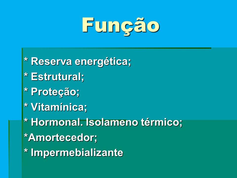 Função * Reserva energética; * Estrutural; * Proteção; * Vitamínica;