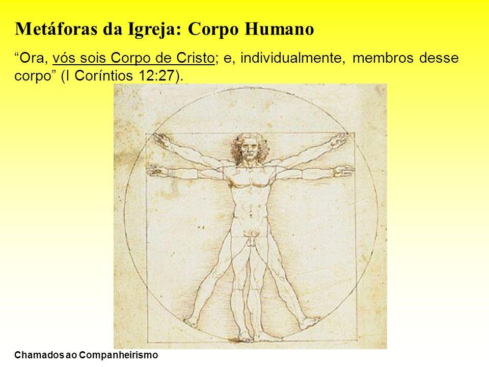 Metáforas da Igreja: Corpo Humano