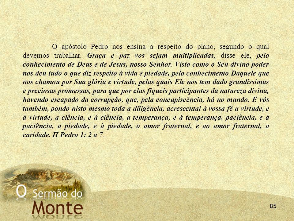 O apóstolo Pedro nos ensina a respeito do plano, segundo o qual devemos trabalhar.