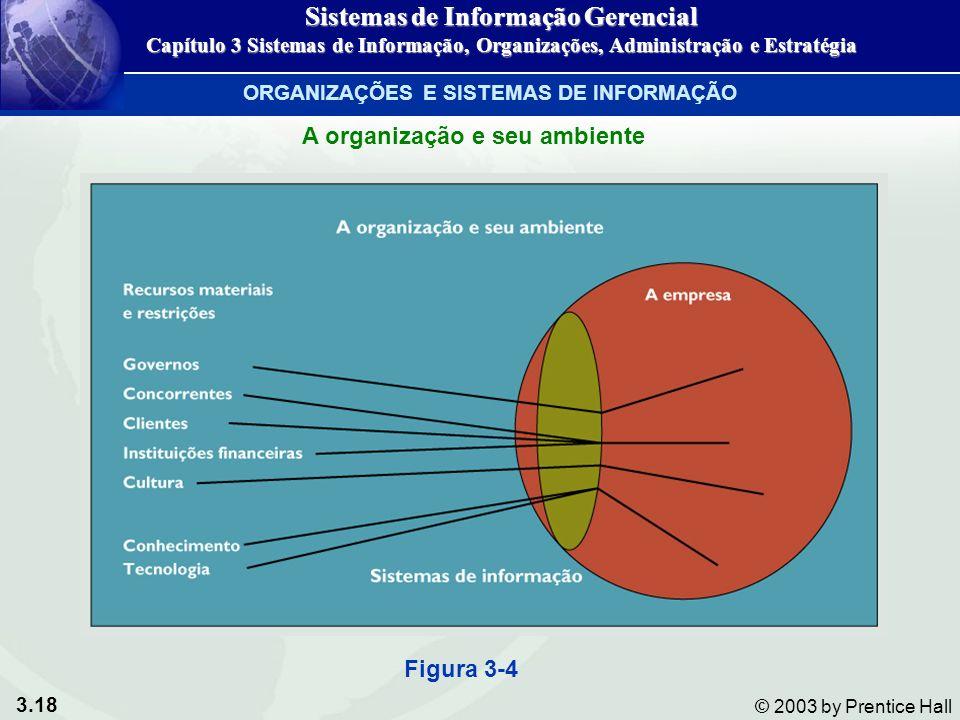 Sistemas de Informação Gerencial ORGANIZAÇÕES E SISTEMAS DE INFORMAÇÃO