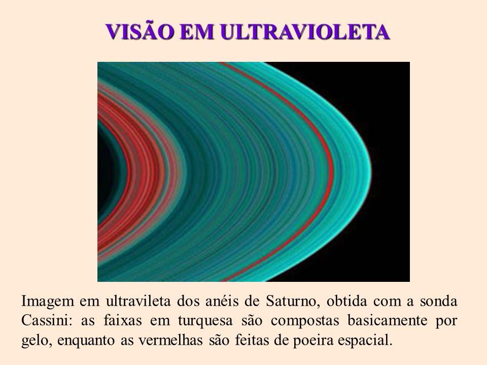 VISÃO EM ULTRAVIOLETA