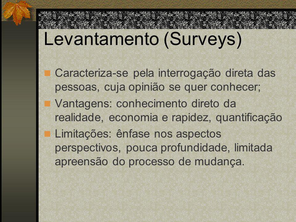 Levantamento (Surveys)