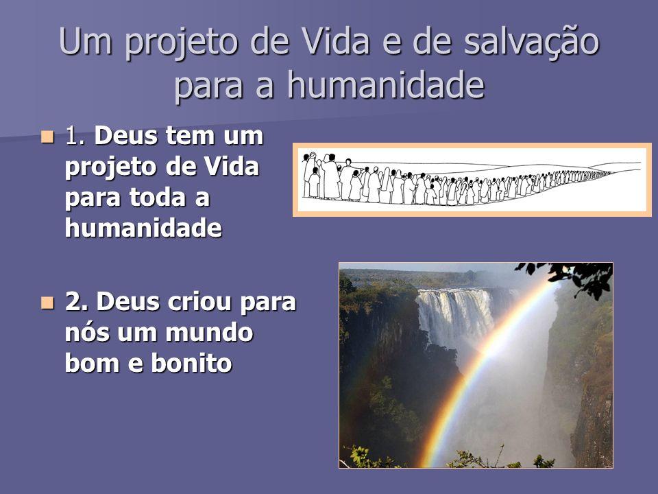 Um projeto de Vida e de salvação para a humanidade