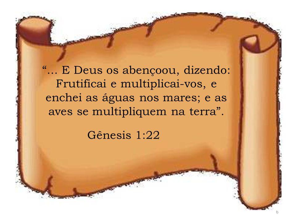 ... E Deus os abençoou, dizendo: Frutificai e multiplicai-vos, e enchei as águas nos mares; e as aves se multipliquem na terra .
