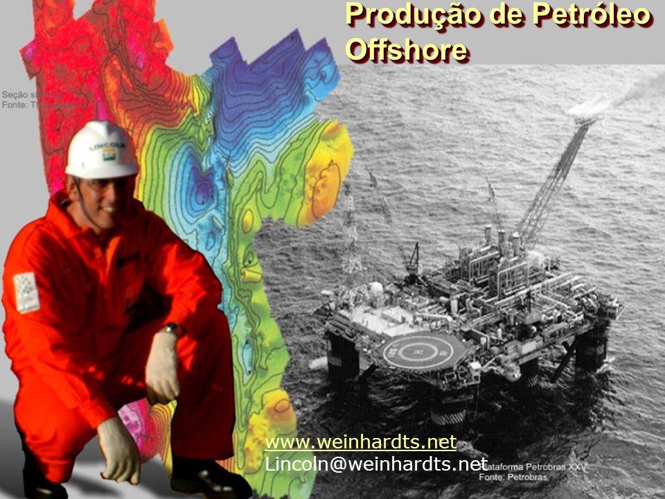 Produção de Petróleo Offshore