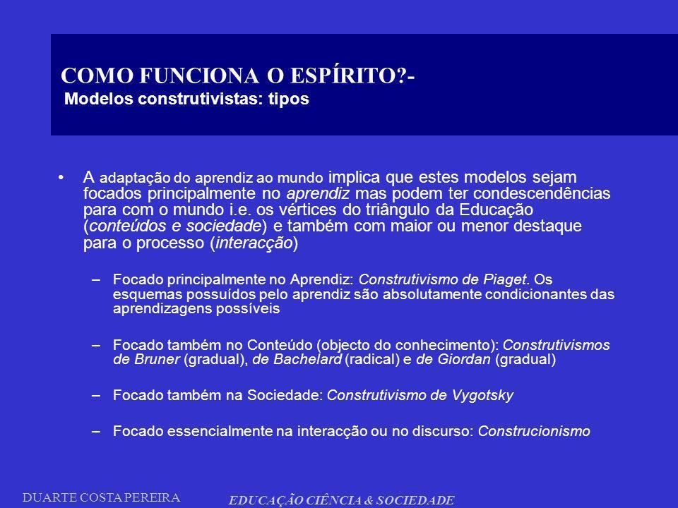 COMO FUNCIONA O ESPÍRITO - Modelos construtivistas: tipos