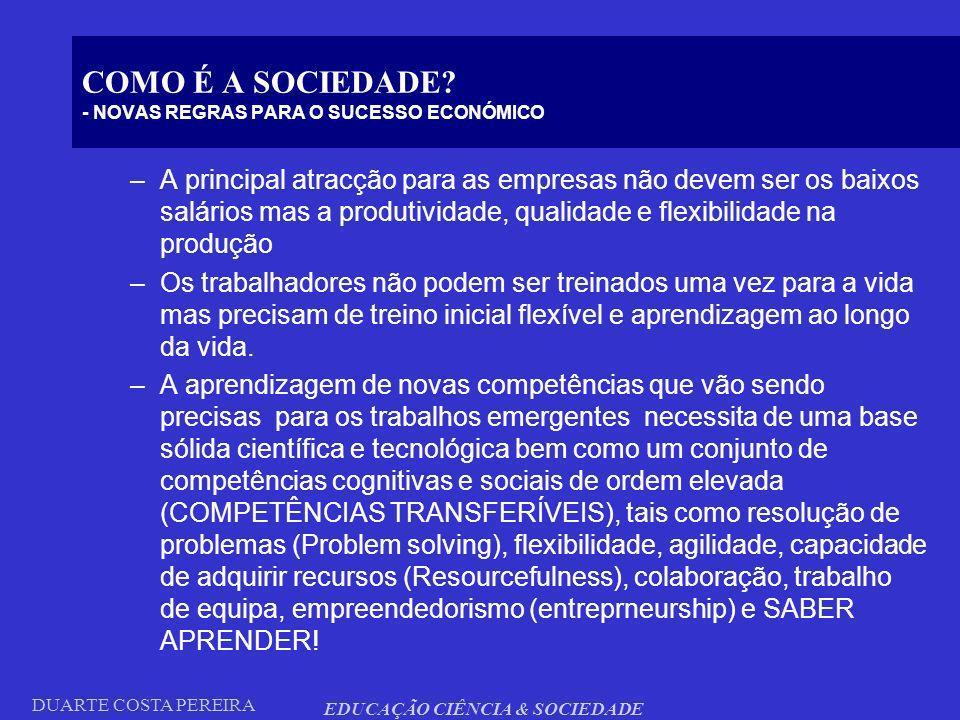 COMO É A SOCIEDADE - NOVAS REGRAS PARA O SUCESSO ECONÓMICO