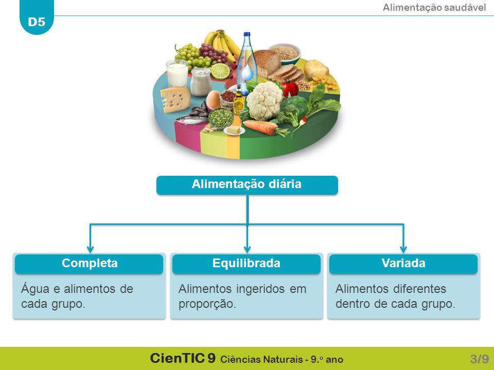Alimentação diária Água e alimentos de cada grupo. Completa. Alimentos ingeridos em proporção. Equilibrada.