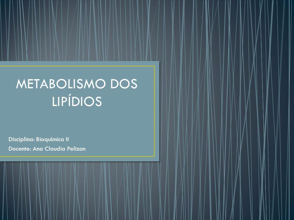 Disciplina: Bioquímica II Docente: Ana Claudia Pelizon