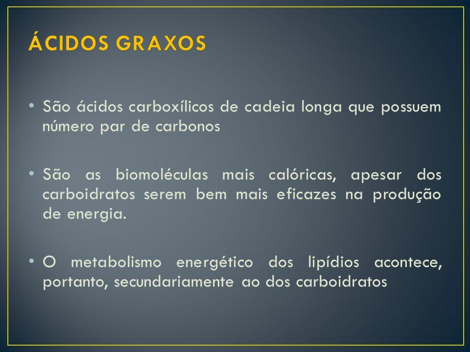 ÁCIDOS GRAXOS São ácidos carboxílicos de cadeia longa que possuem número par de carbonos.