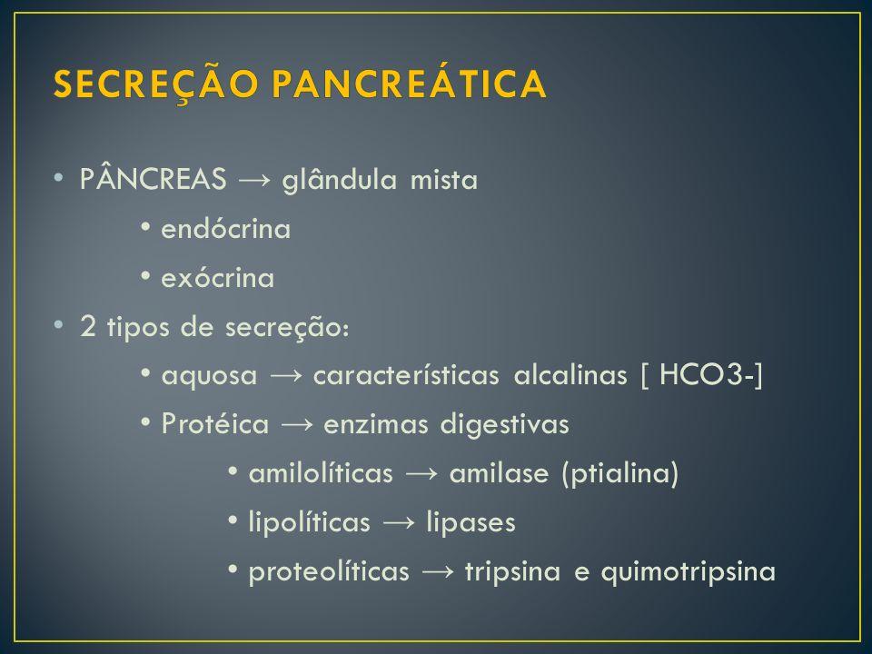 SECREÇÃO PANCREÁTICA PÂNCREAS → glândula mista • endócrina • exócrina