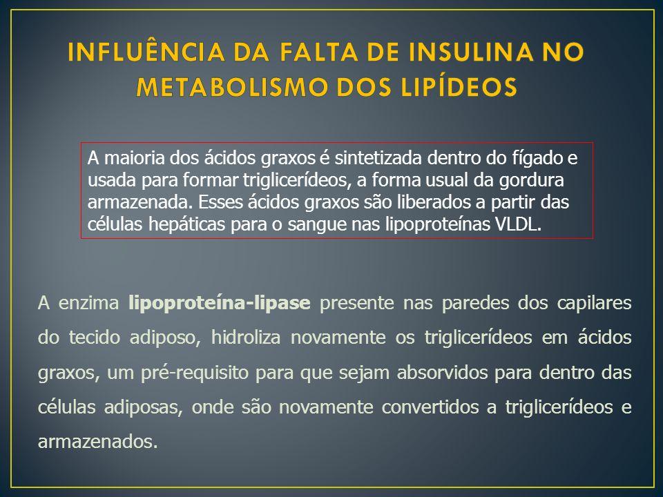 INFLUÊNCIA DA FALTA DE INSULINA NO METABOLISMO DOS LIPÍDEOS